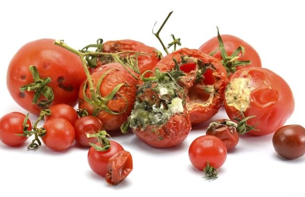 Keep Off Rotten Tomatoes To Avoid Cancer, NAFDAC Warns Nigerians