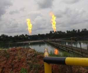 Over 700 Companies Applied For 178 Gas Flare Sites In Niger Delta